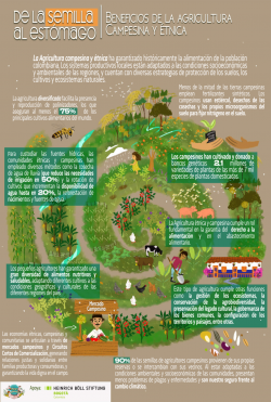 Gráfica alusiva a De la semilla al estómago - Beneficios de la agricultura campesina y étnica
