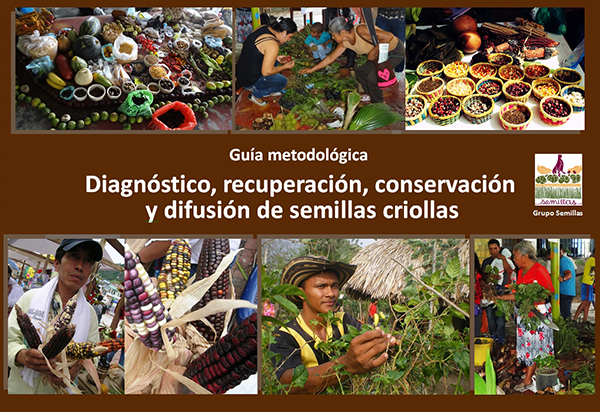 Gráfica alusiva a Descargue la guía metodológica Diagnóstico, recuperación, conservación y difusión de semillas criollas