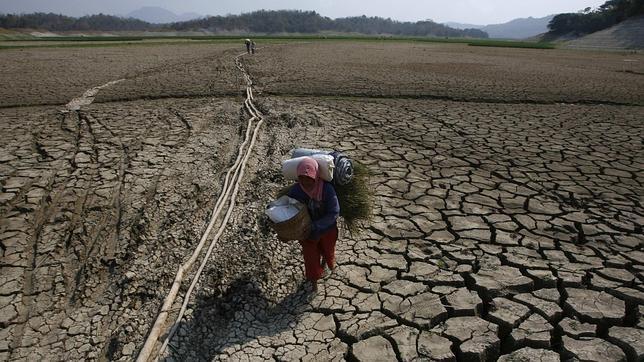 Gráfica alusiva a Degradación de los suelos amenaza nutrición en América Latina